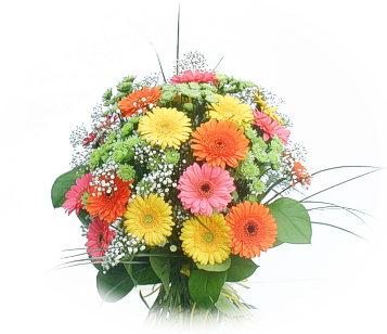 13 adet gerbera çiçegi buketi  Diyarbakır çiçek yolla