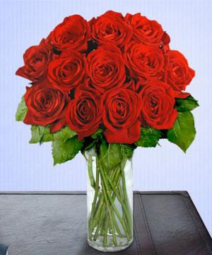 Anneme 12 adet cam içerisinde kirmizi gül  Diyarbakır yurtiçi ve yurtdışı çiçek siparişi