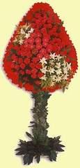 Diyarbakır anneler günü çiçek yolla  dügün açilis çiçekleri  Diyarbakır çiçekçi mağazası