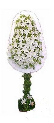 Diyarbakır yurtiçi ve yurtdışı çiçek siparişi  nikah , dügün , açilis çiçek modeli  Diyarbakır çiçek yolla