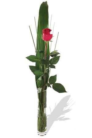 1 adet cam vazo içerisinde kirmizi gül  Diyarbakır çiçek servisi , çiçekçi adresleri