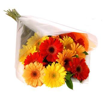 Karisik renklerde gerbera buketi  Diyarbakır çiçekçi telefonları