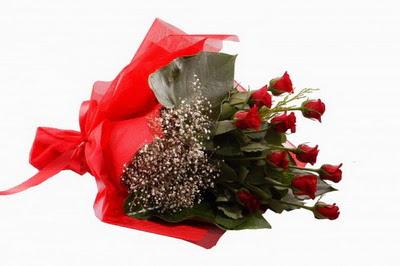 Diyarbakır yurtiçi ve yurtdışı çiçek siparişi  11 adet kirmizi gül buketi çiçekçi