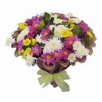 Diyarbakır hediye sevgilime hediye çiçek  Mevsim kir çiçegi demeti