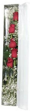Diyarbakır yurtiçi ve yurtdışı çiçek siparişi   5 adet gülden kutu güller