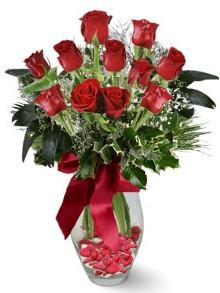 9 adet gül  Diyarbakır online çiçekçi , çiçek siparişi  kirmizi gül