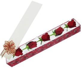 Diyarbakır online çiçekçi , çiçek siparişi  kutu içerisinde 5 adet kirmizi gül