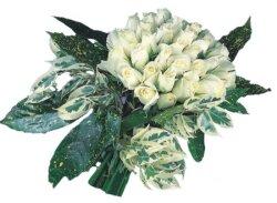 Diyarbakır İnternetten çiçek siparişi  9 Beyaz gül Özel kisiler için