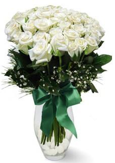 19 adet essiz kalitede beyaz gül  Diyarbakır çiçek yolla , çiçek gönder , çiçekçi