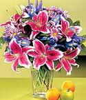 Diyarbakır internetten çiçek satışı  Sevgi bahçesi Özel  bir tercih