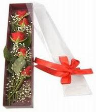 kutu içinde 5 adet kirmizi gül  Diyarbakır İnternetten çiçek siparişi