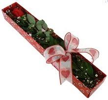 Tek kirmizi gül kutu içerisinde  Diyarbakır internetten çiçek siparişi