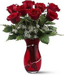 Vazo içinde 8 adet kirmizilar içinde güller  Diyarbakır İnternetten çiçek siparişi