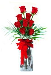 Diyarbakır hediye sevgilime hediye çiçek  9 adet mika yada cam vazoda gül tanzimi