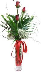 Diyarbakır yurtiçi ve yurtdışı çiçek siparişi  3 adet kirmizi gül vazo içerisinde