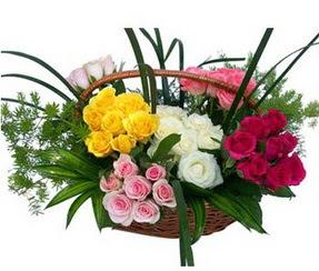 Diyarbakır çiçek mağazası , çiçekçi adresleri  35 adet rengarenk güllerden sepet tanzimi