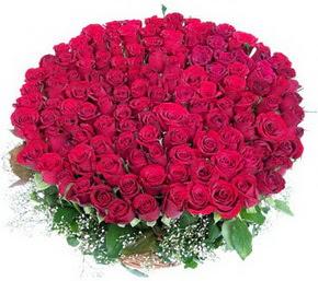 Diyarbakır online çiçek gönderme sipariş  100 adet kırmızı gülden görsel buket