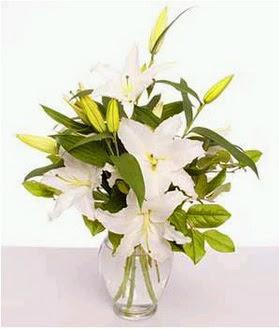 Diyarbakır anneler günü çiçek yolla  2 dal cazablanca vazo çiçeği