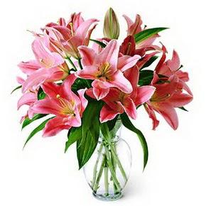 3 dal kazablanka görsel vazosu  Diyarbakır İnternetten çiçek siparişi