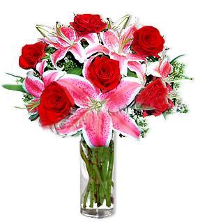 Diyarbakır 14 şubat sevgililer günü çiçek  1 dal cazablanca ve 6 kırmızı gül çiçeği