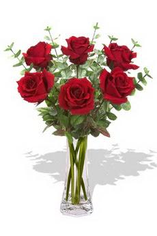 Diyarbakır güvenli kaliteli hızlı çiçek  6 kırmızı gül vazosu