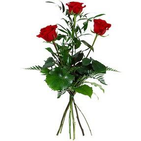 Diyarbakır çiçek satışı  3 adet kırmızı gülden buket