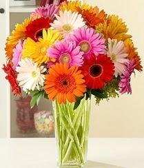 Diyarbakır çiçek siparişi sitesi  15 adet gerbera çiçek vazosu