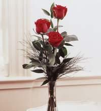 Diyarbakır online çiçekçi , çiçek siparişi  Vazoda 3 adet güzel gül