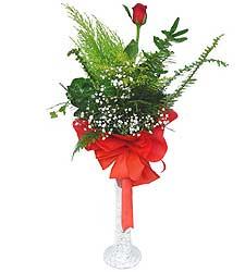 Diyarbakır ucuz çiçek gönder  Cam vazoda masum tek gül