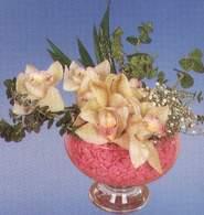 Diyarbakır internetten çiçek satışı  Dal orkide kalite bir hediye
