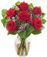 Kız arkadaşıma hediye 6 kırmızı gül  Diyarbakır İnternetten çiçek siparişi