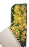 Diyarbakır anneler günü çiçek yolla  Kutu içerisine dal cymbidium orkide