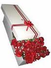 Diyarbakır hediye sevgilime hediye çiçek  11 adet 1.kalite magnum güller
