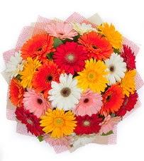 15 adet renkli gerbera buketi  Diyarbakır çiçek siparişi vermek