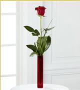 Vazo içerisinde 1 adet kırmızı gül  Diyarbakır İnternetten çiçek siparişi
