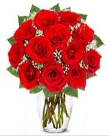 12 adet vazoda kıpkırmızı gül  Diyarbakır çiçek gönderme