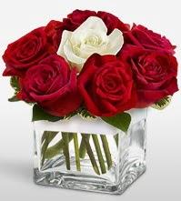 Tek aşkımsın çiçeği 8 kırmızı 1 beyaz gül  Diyarbakır çiçek satışı