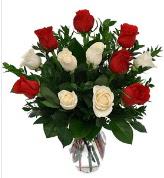 Vazo içerisinde 6 kırmızı 6 beyaz gül  Diyarbakır kaliteli taze ve ucuz çiçekler