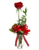 vazo içerisinde 1 adet kırmızı gül  Diyarbakır hediye sevgilime hediye çiçek