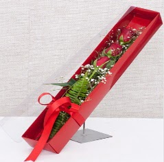 Kutu içerisinde 3 adet kırmızı gül  Diyarbakır çiçek yolla