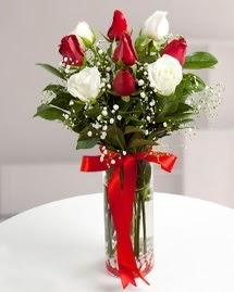 5 kırmızı 4 beyaz gül vazoda  Diyarbakır çiçekçi telefonları