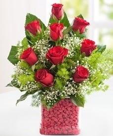 Cam içerisinde 9 adet kırmızı gül  Diyarbakır online çiçekçi , çiçek siparişi