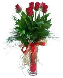 vazo içerisinde 5 kırmızı gül  Diyarbakır internetten çiçek siparişi