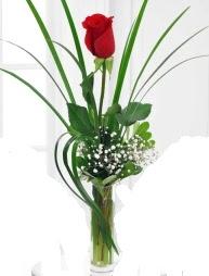 Cam içerisinde 1 kırmızı gül  Diyarbakır uluslararası çiçek gönderme