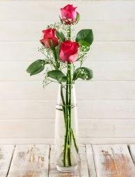 Cam içerisinde 3 kırmızı gül  Diyarbakır çiçek online çiçek siparişi