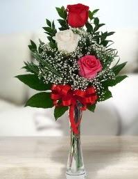 Camda 2 kırmızı 1 beyaz gül  Diyarbakır çiçek mağazası , çiçekçi adresleri