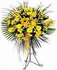 Diyarbakır çiçek siparişi vermek  Sari kazablanka Ferforje