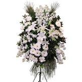 Diyarbakır çiçek gönderme  Ferforje beyaz renkli kazablanka