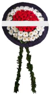 mozele çiçeği  Diyarbakır hediye çiçek yolla