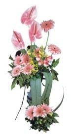 Diyarbakır internetten çiçek siparişi  Pembe Antoryum Harikalar Rüyasi